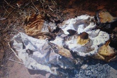 Feto de seis meses é encontrado queimado em matagal no interior do PI