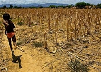 150 mil famílias são afetadas pela seca no semiárido do PI