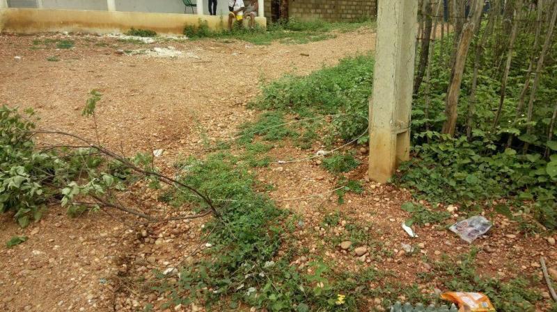 Criança de cinco anos morre eletrocutada em fio que caiu de poste