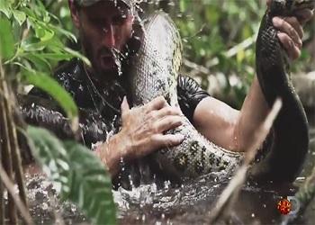 Discovery exibe especial com homem sendo engolido vivo por cobra