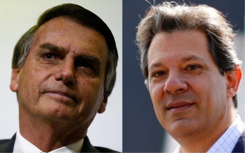Haddad chama Bolsonaro de 'soldadinho de araque' e critica ausência em debates