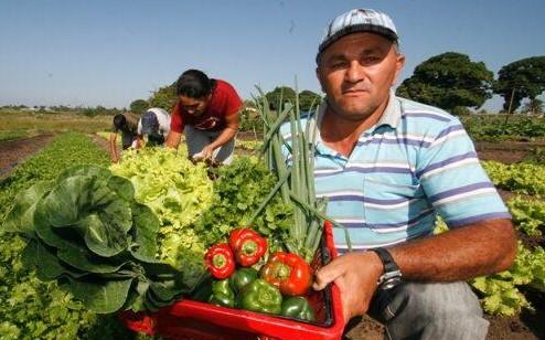 Prefeitura lança edital para aquisição de gêneros alimentícios da Agricultura Familiar
